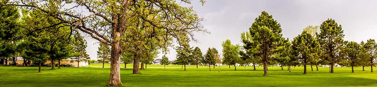 oaks golf course hayfield minnesota
